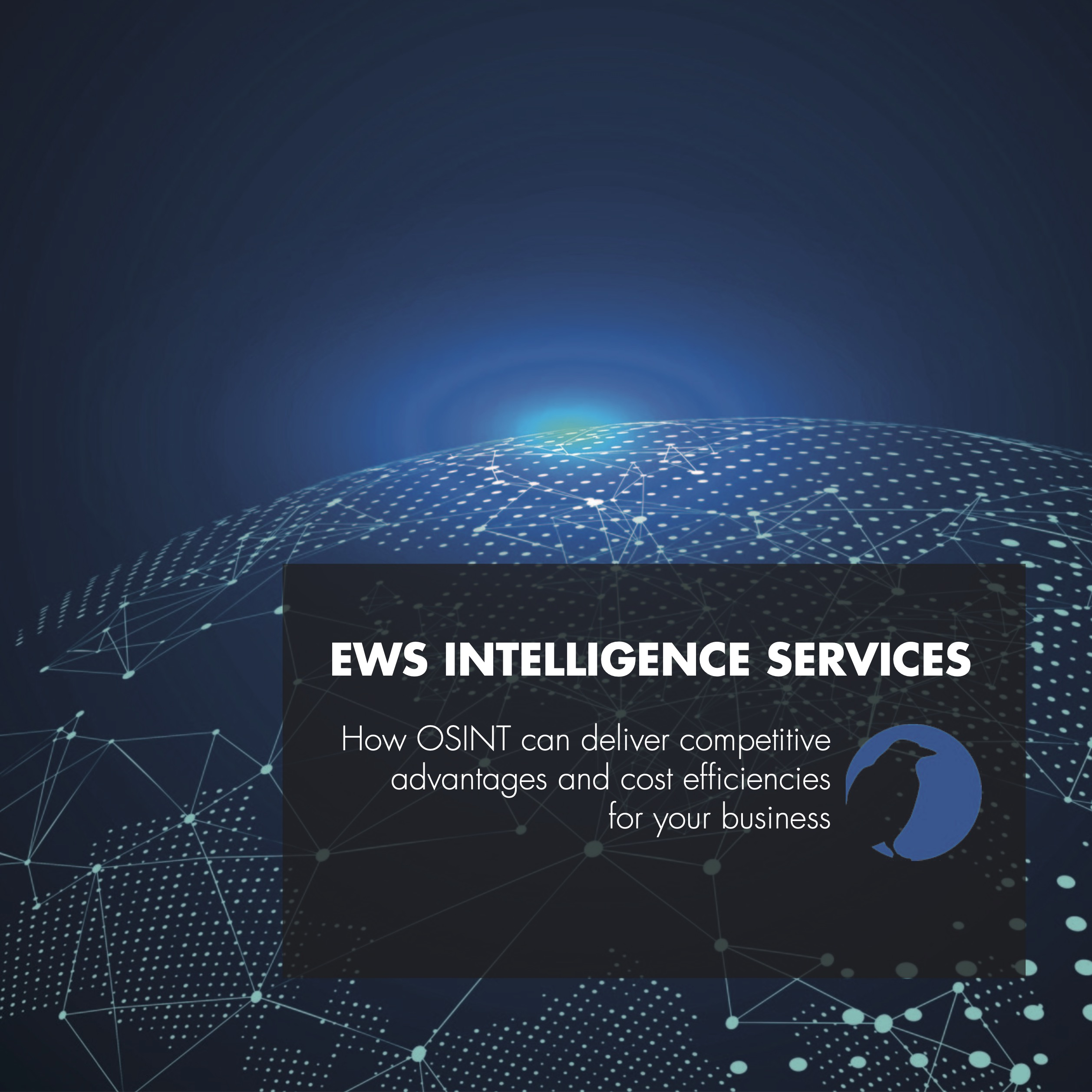 EWS Intelligence Services brochure